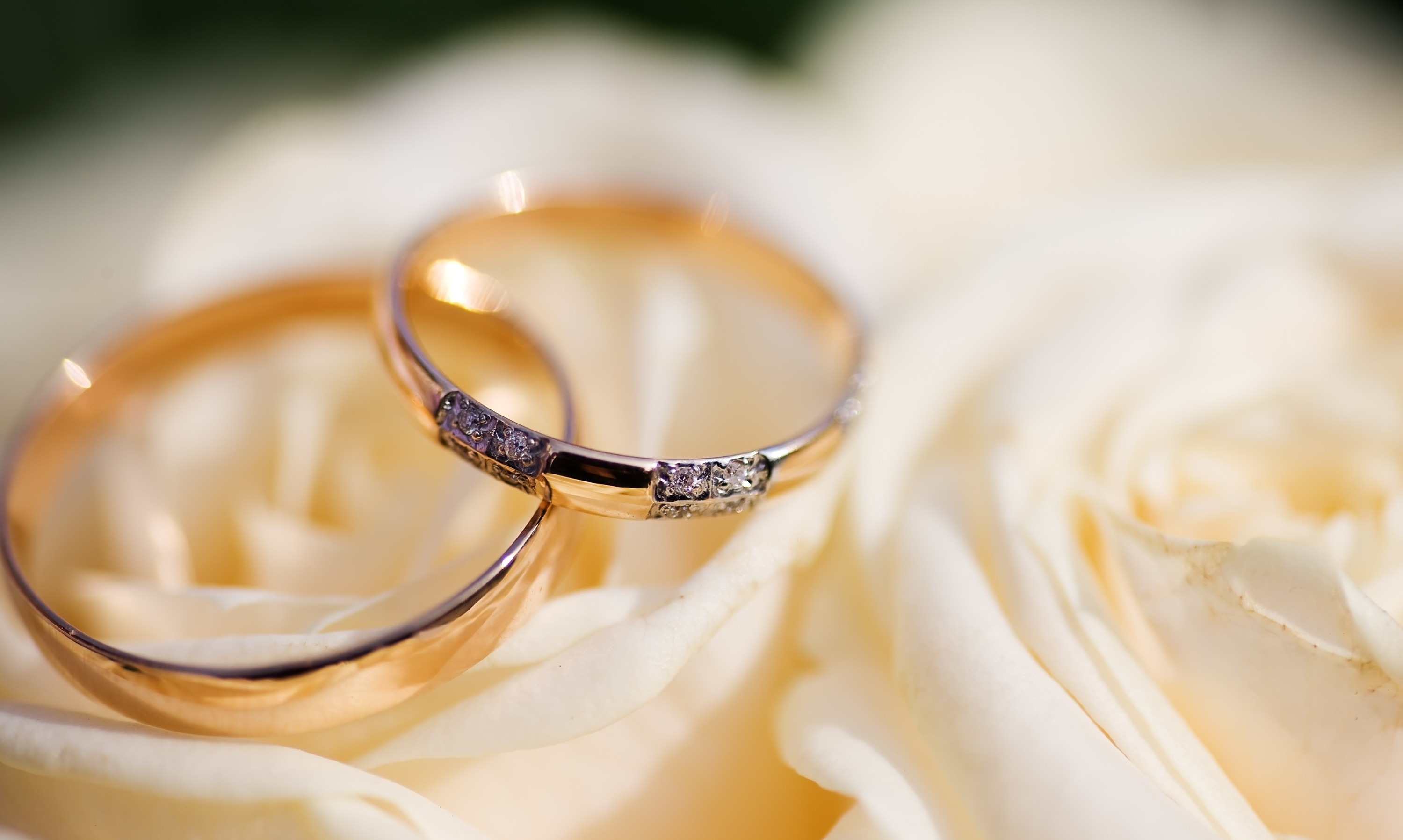 engagement rings card wallpapers - HD 3000×1790